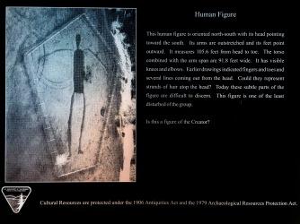 Human Figure #1